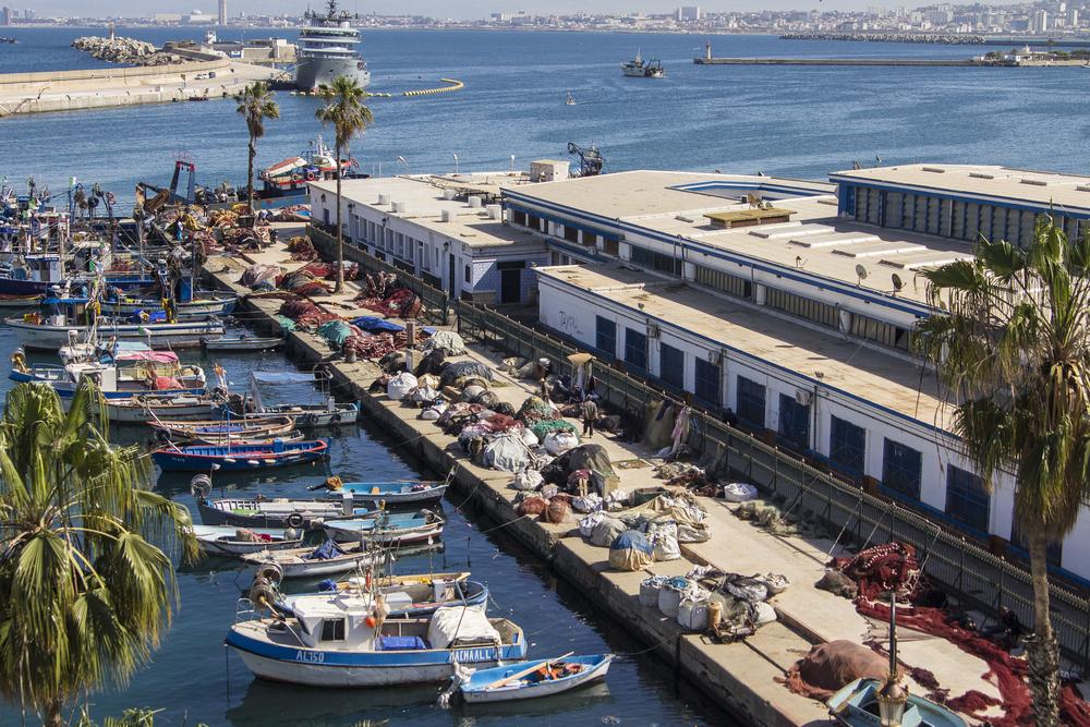 Лодки в порту Алжира