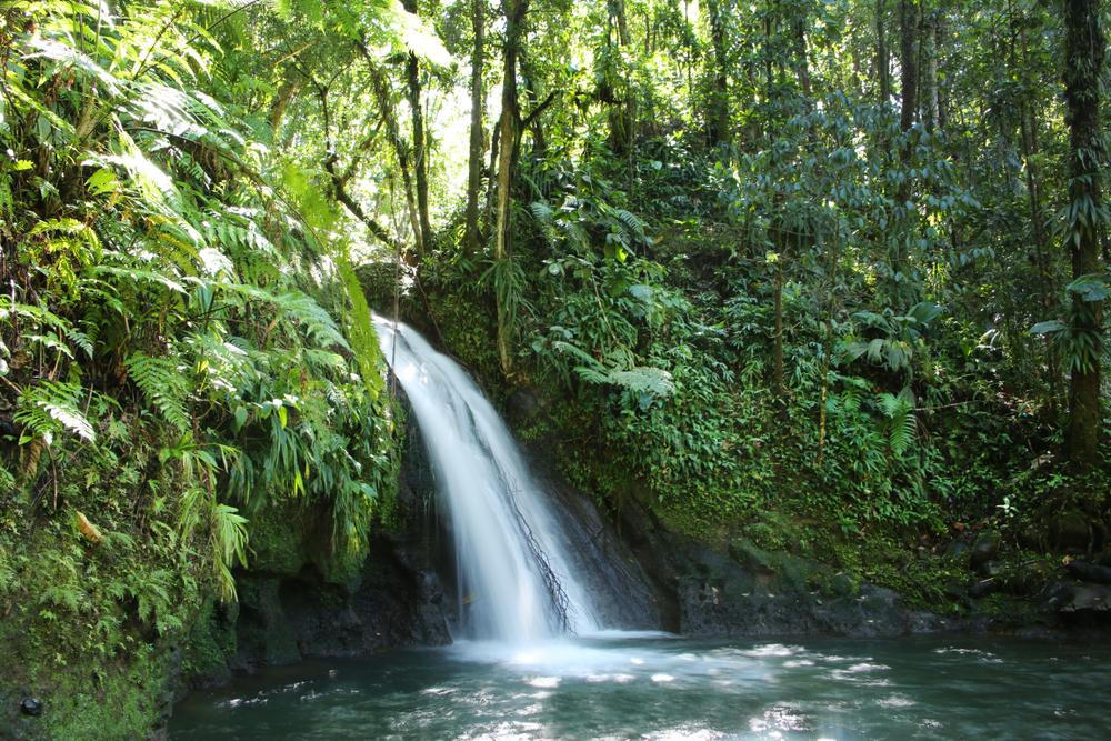 Водопад Cascade aux Ecrevisses