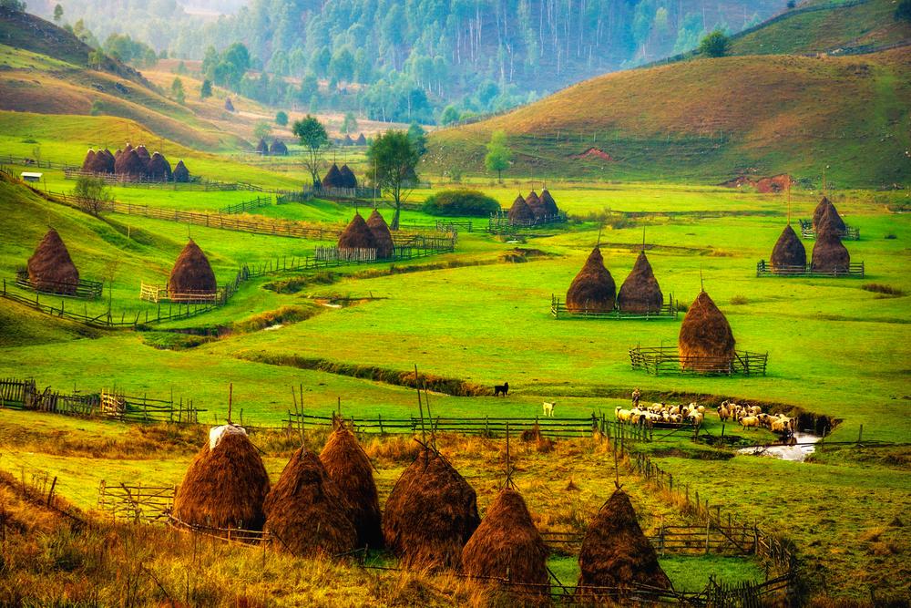 Сельская местность недалеко от деревни Фундатура в Румынии