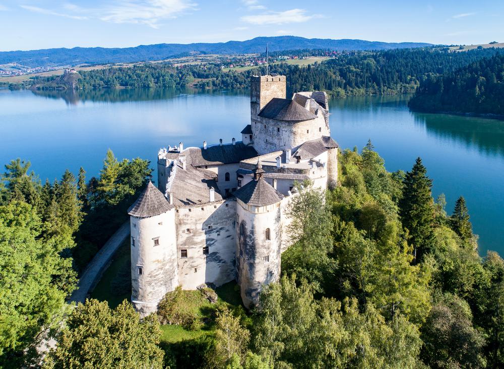 Замок в Недзице