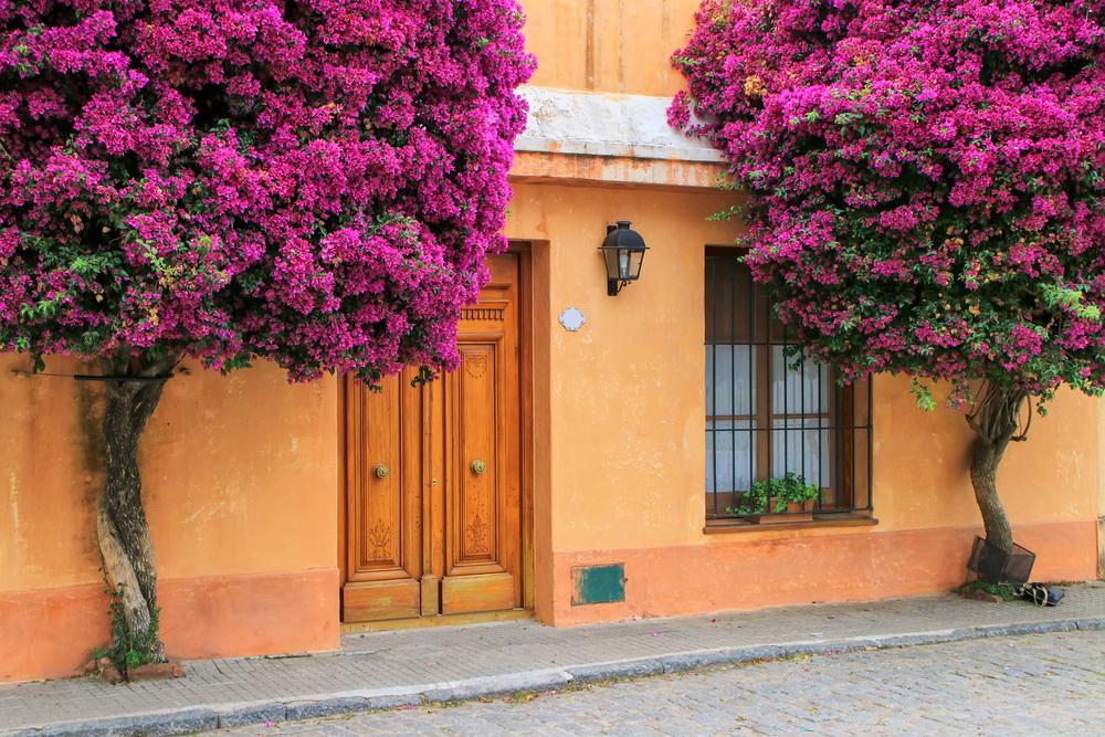Исторический квартал города Колония-дель-Сакраменто
