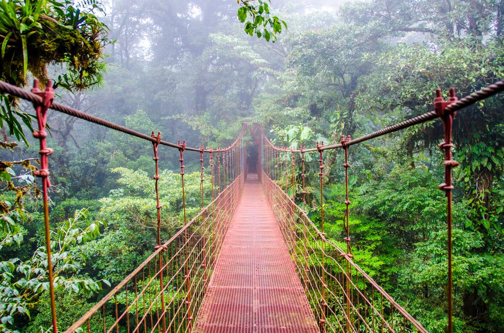 Подвесной мост на Коста Рике
