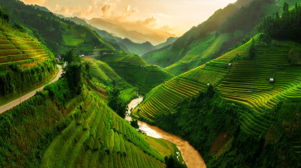 Рисовые террасы в Сапа