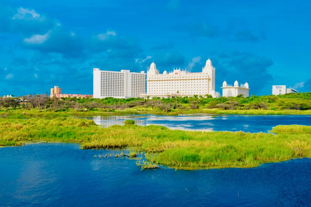Отель Riu Palace Aruba на пляже Палм-Бич