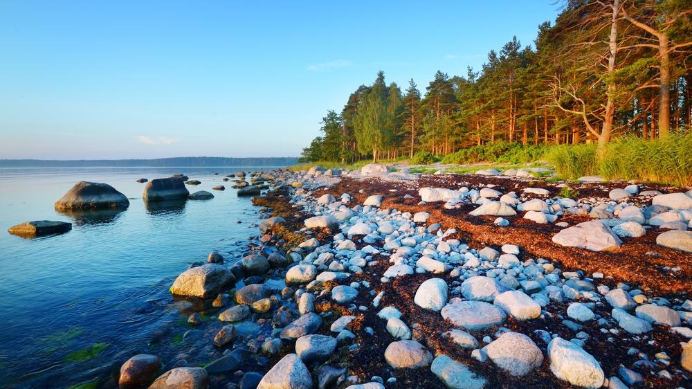 Камни на берегу Кясму