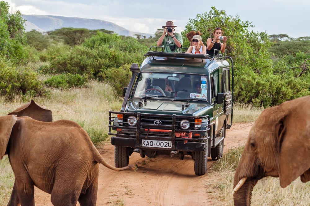 Слоны в Масаи-Мара