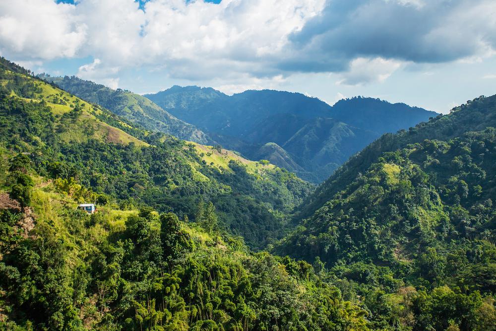 Ямайка, где выращивают кофе