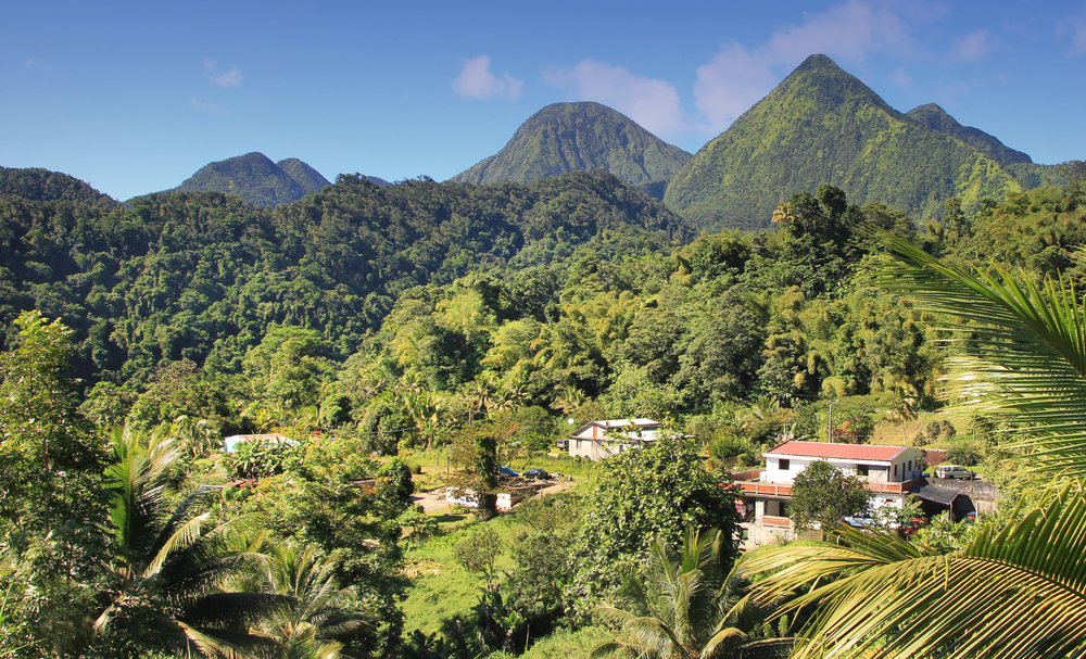 Зеленый ландшафт острова