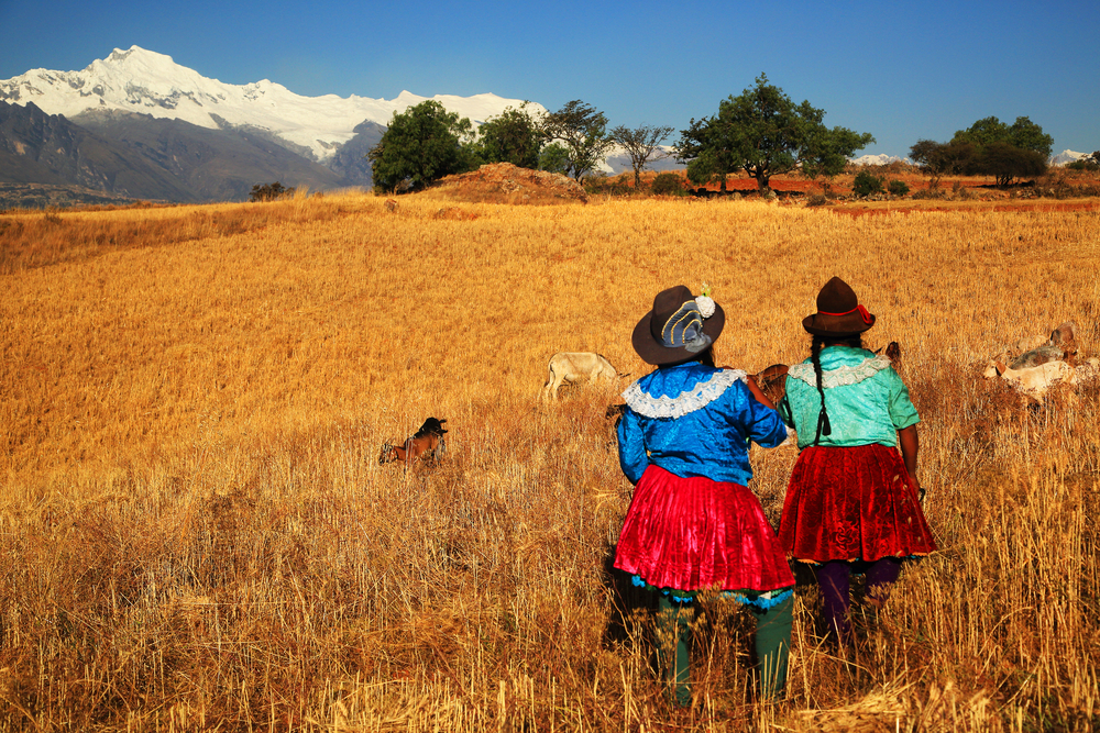 Этнический состав Латинской Америки