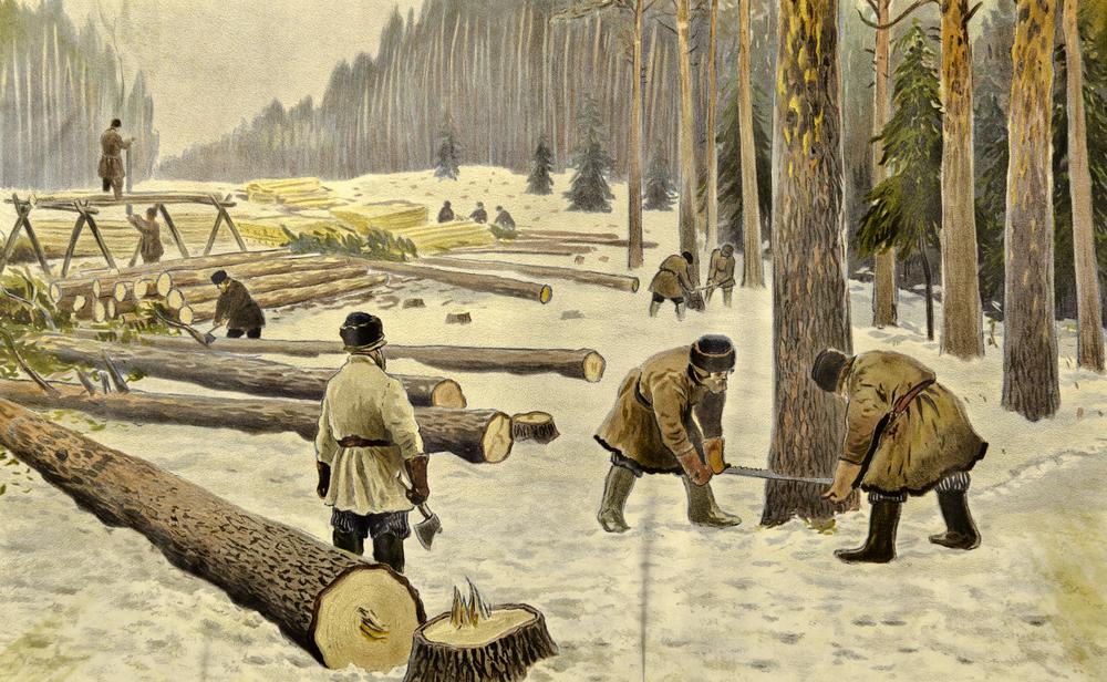 Лесозаготовки в Сибири
