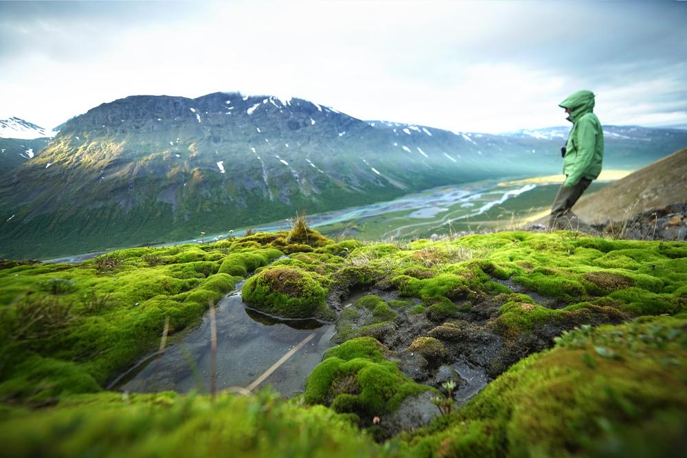 Вид на долину. Северная Швеция