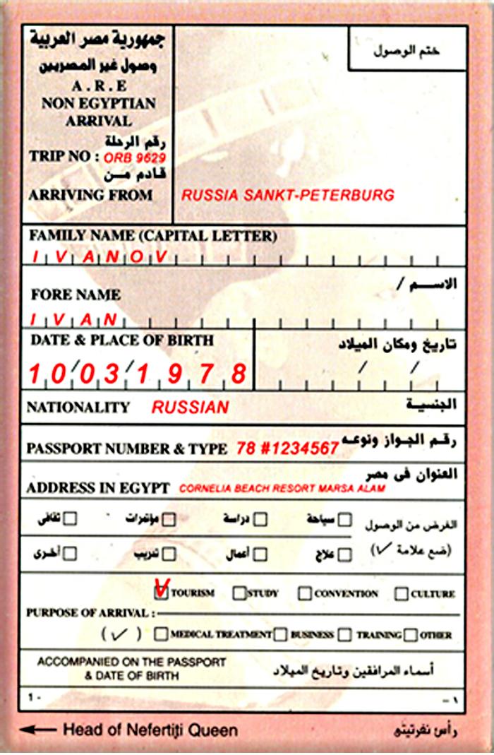 Образец миграционной карты в Египет