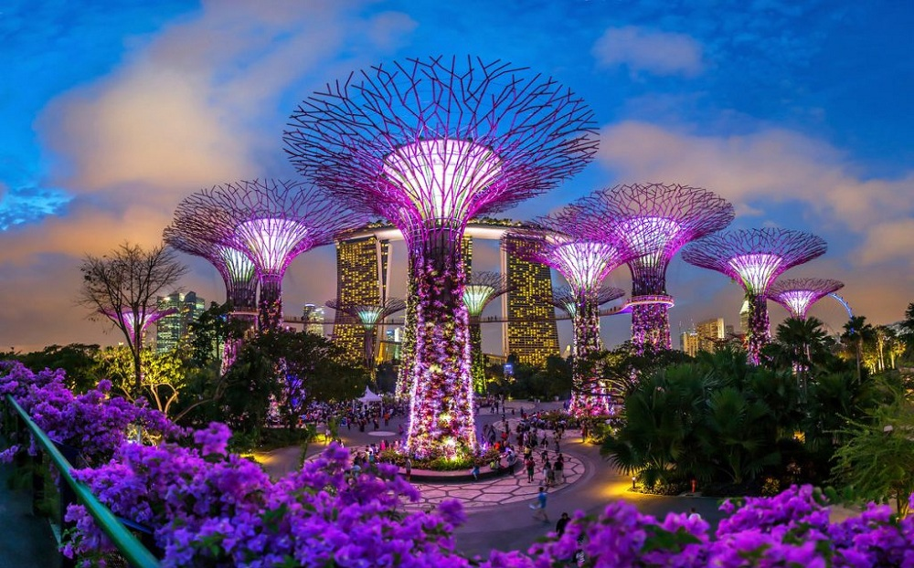 Gardens By the Bay, Cингапур