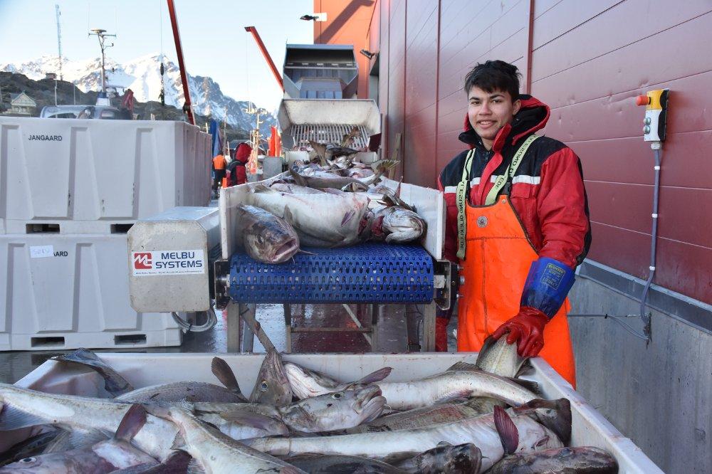 Переработка рыбы на Аляске