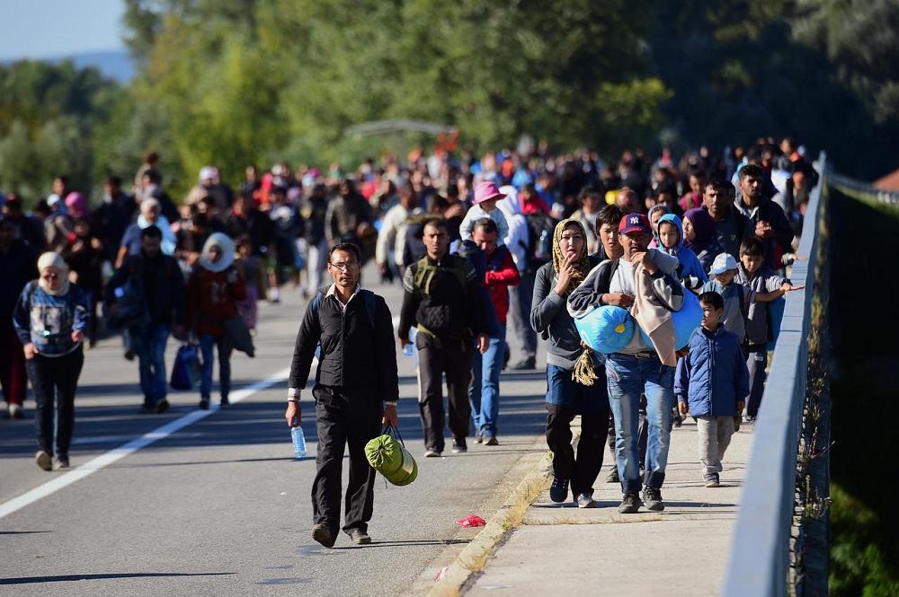Миграционная политика Эстонии