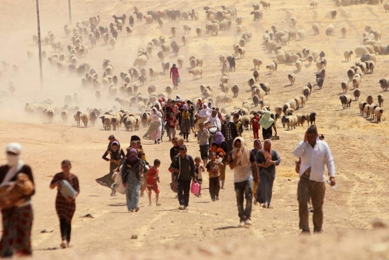 Основные причины миграции в мире