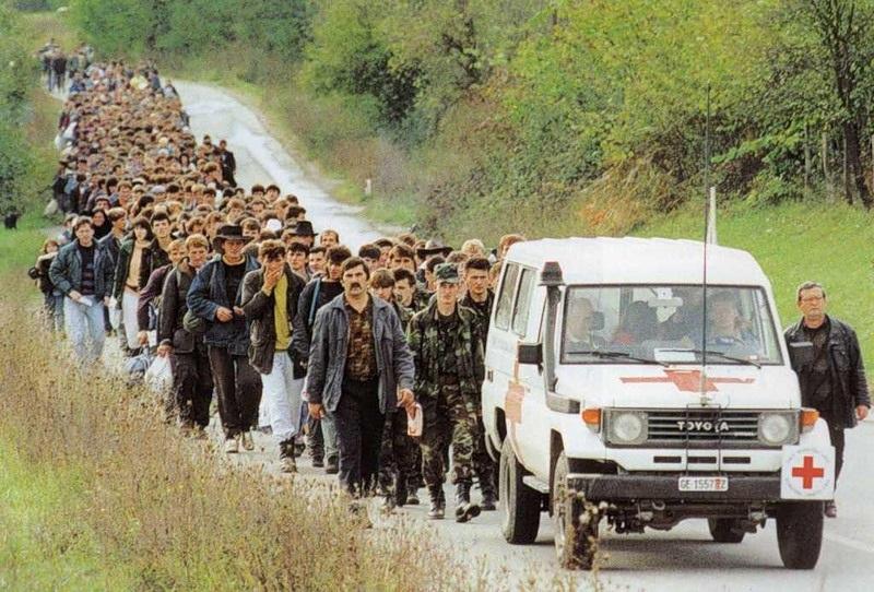 Позиция сербов