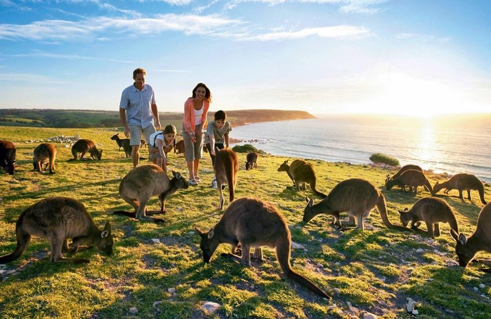 Продолжительность жизни в Австралии