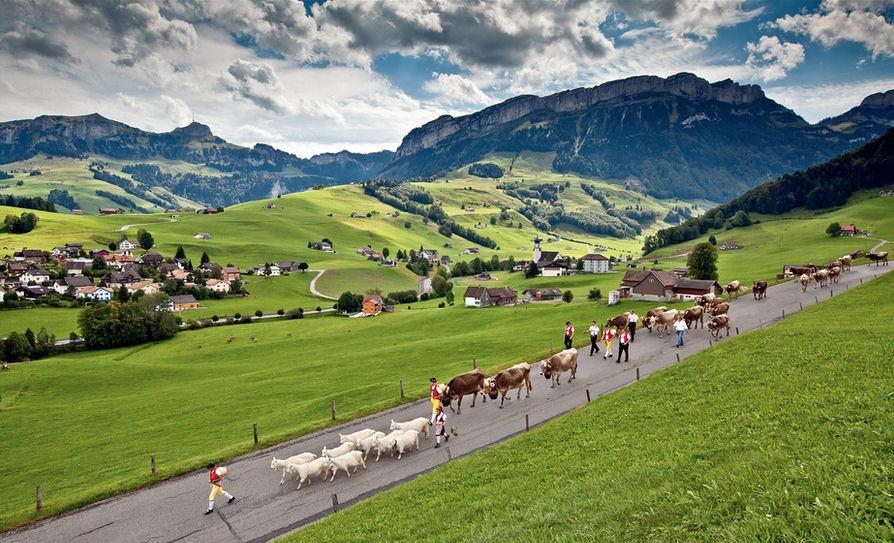 Работа для мигрантов в Швейцарии