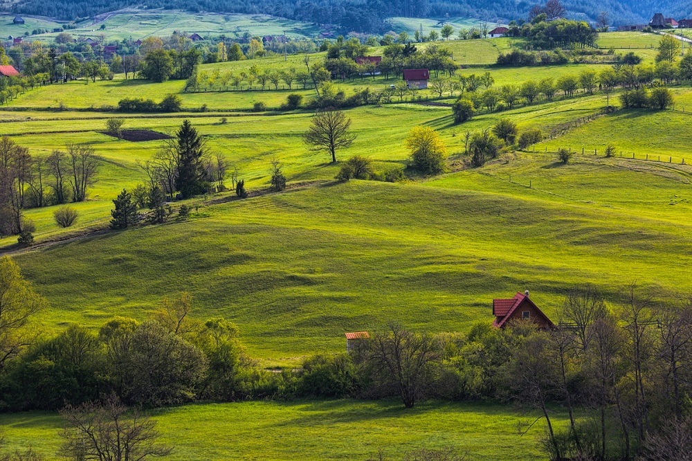 Преимущества жизни в Сербии