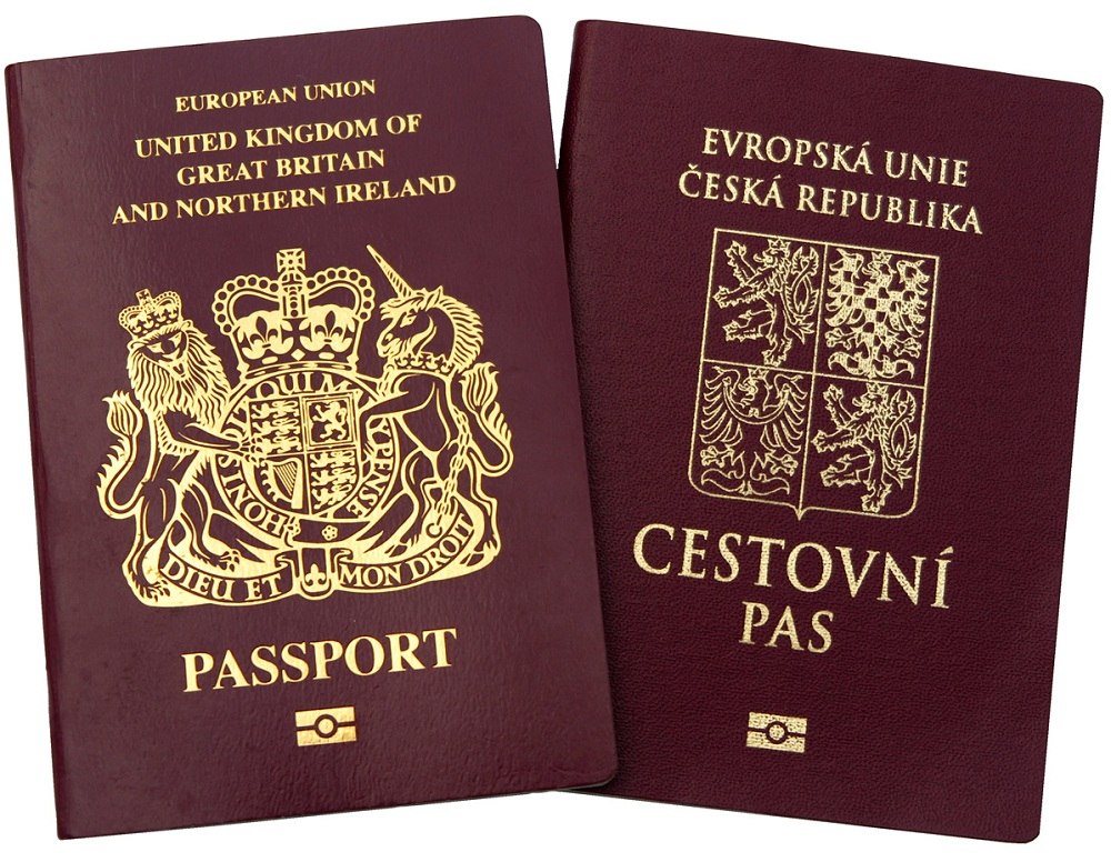Возможность двойного гражданства