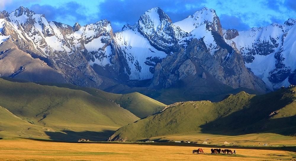 Природа Узбекистана