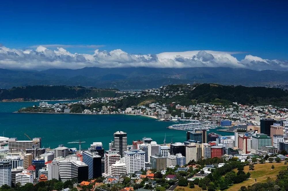 Востребованные специалисты в Новой Зеландии