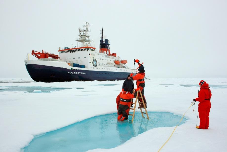 Доступные вакансии в Антарктиде
