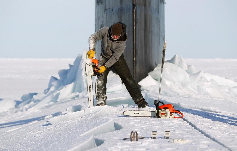 Востребованные специальности в Антарктиде