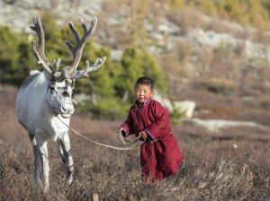 Виза в Монголию в 2020 году: нюансы получения для россиян
