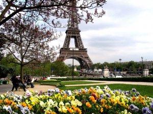 Образование во Франции: как получить