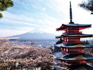 Как переехать в Японию: способы и советы
