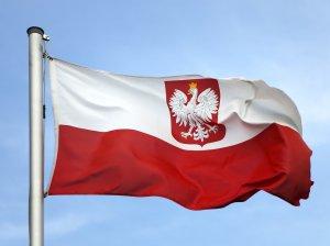 Как найти работу в Польше для украинцев: как трудоустроиться
